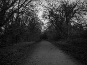 Hänsel und Gretel gingen durch den Wald...
